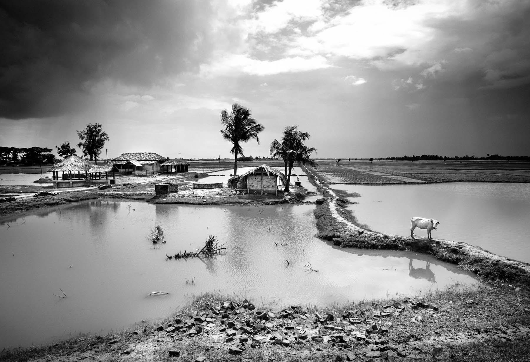 Jules_toulet_bangladesh-16